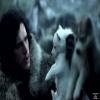 Το Game of Thrones αύξησε τον αριθμό των εγκαταλελειμμένων χάσκι.